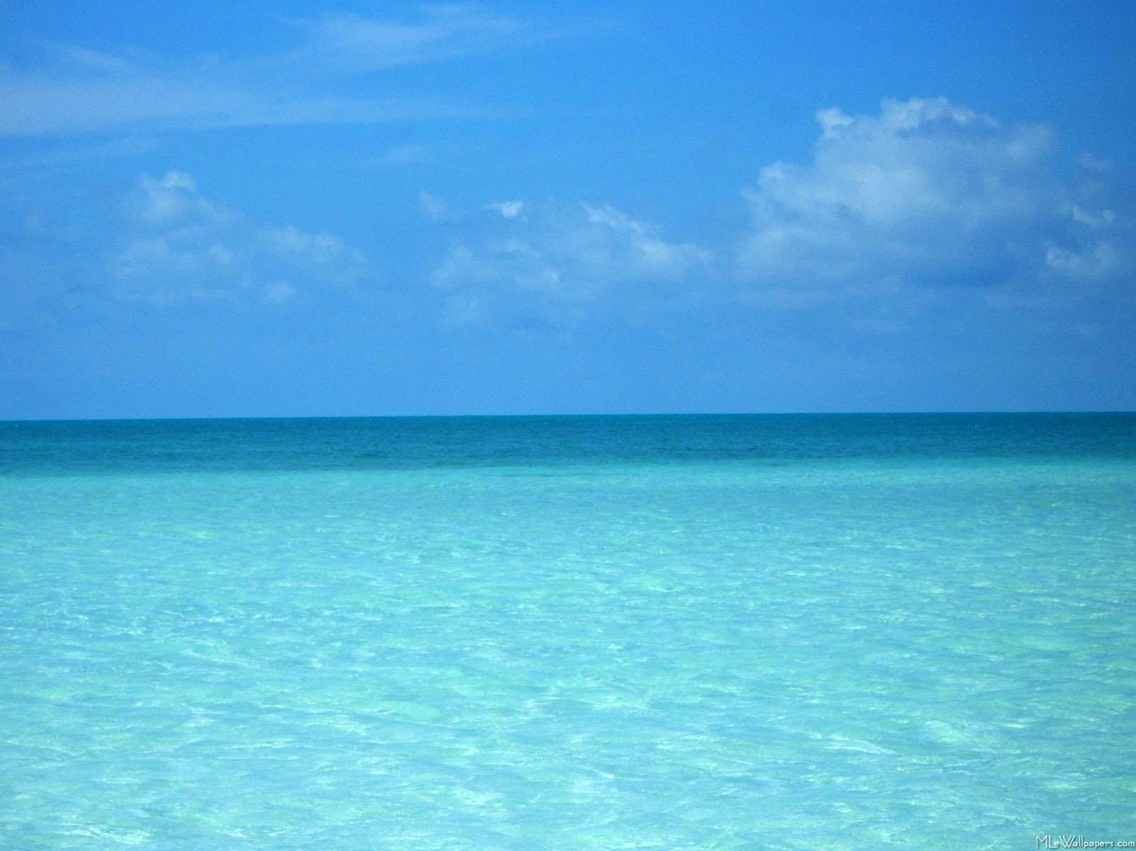 Bonaire Netherlands Antilles 49 4
